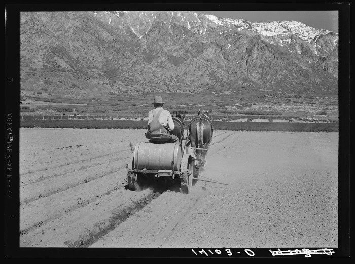 Farmer plowing his fields in Cache County 1940